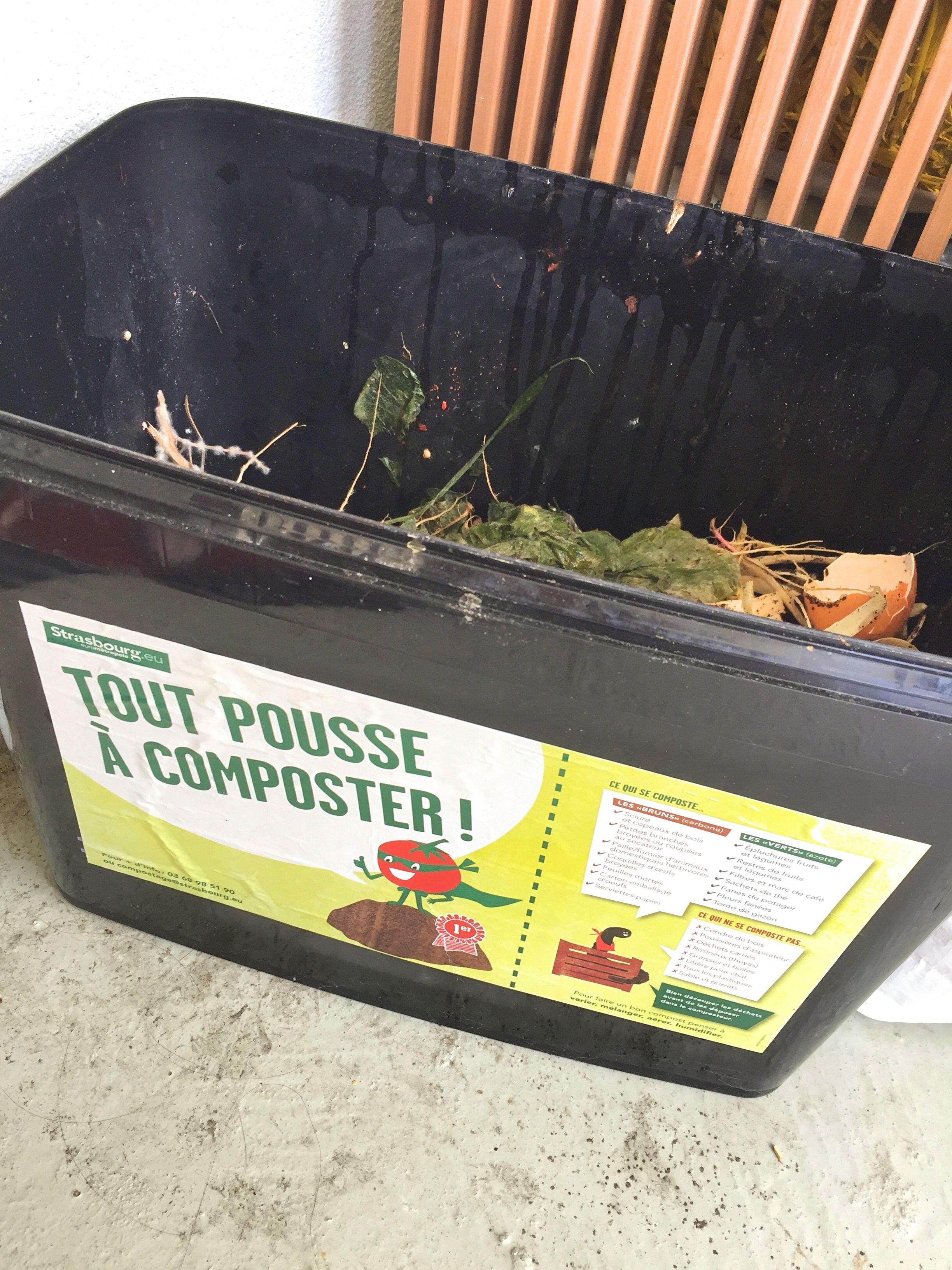 Un petit bac à compost, fourni par la Ville de Strasbourg, permet à Amandine de stocker ses déchets verts, avant de les apporter au compost de la Rotonde. (Photo EB - Les Défricheurs)